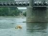 Loira 1982